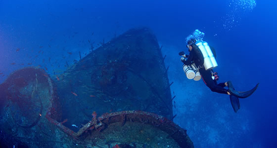 Diving Programs and Tour