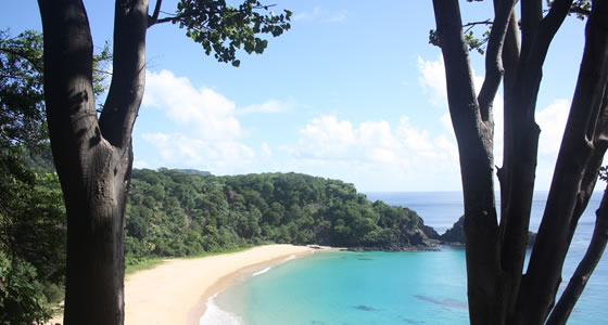 Vacation Package Combinations with Fernando de Noronha Island.